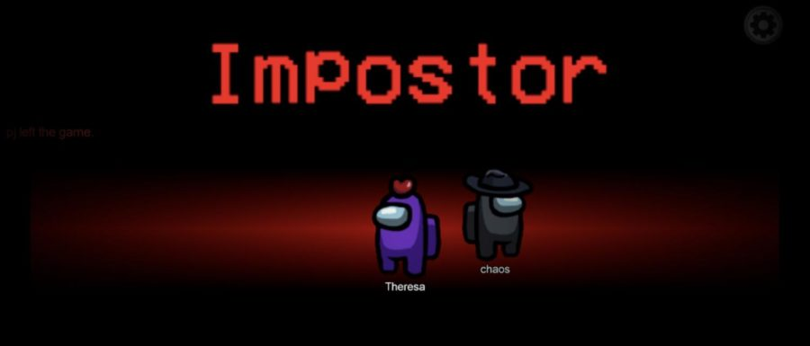 The beginning of the game shows you who your partner imposter is.